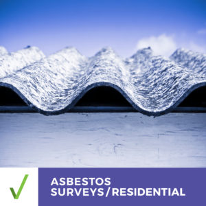 ALL CLEAR PRE-PURCHASE ASBESTOS SURVEY – RESIDENTIAL – Survey Report Within 2 Business Days