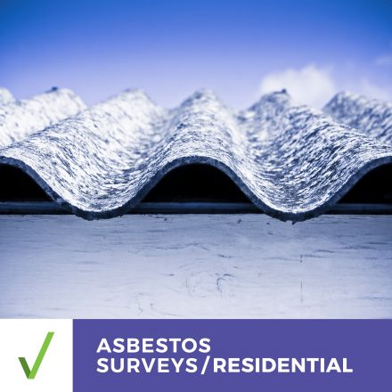 ALL CLEAR ASBESTOS SURVEY – RESIDENTIAL –  Management Survey Report Within 2 Business Days